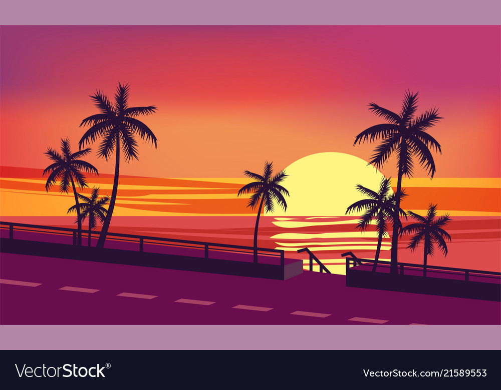 Sunset ocean evening palm trees sea shore