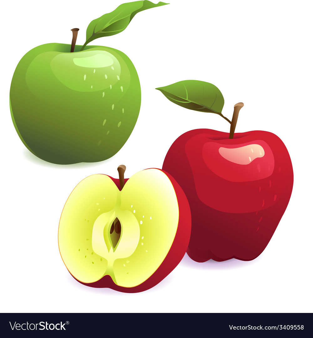 Green and red apples with leaves vector image
