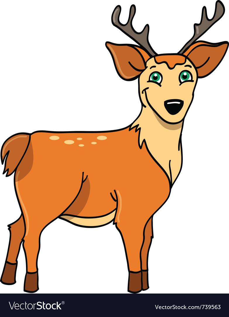 Deer buck vector image