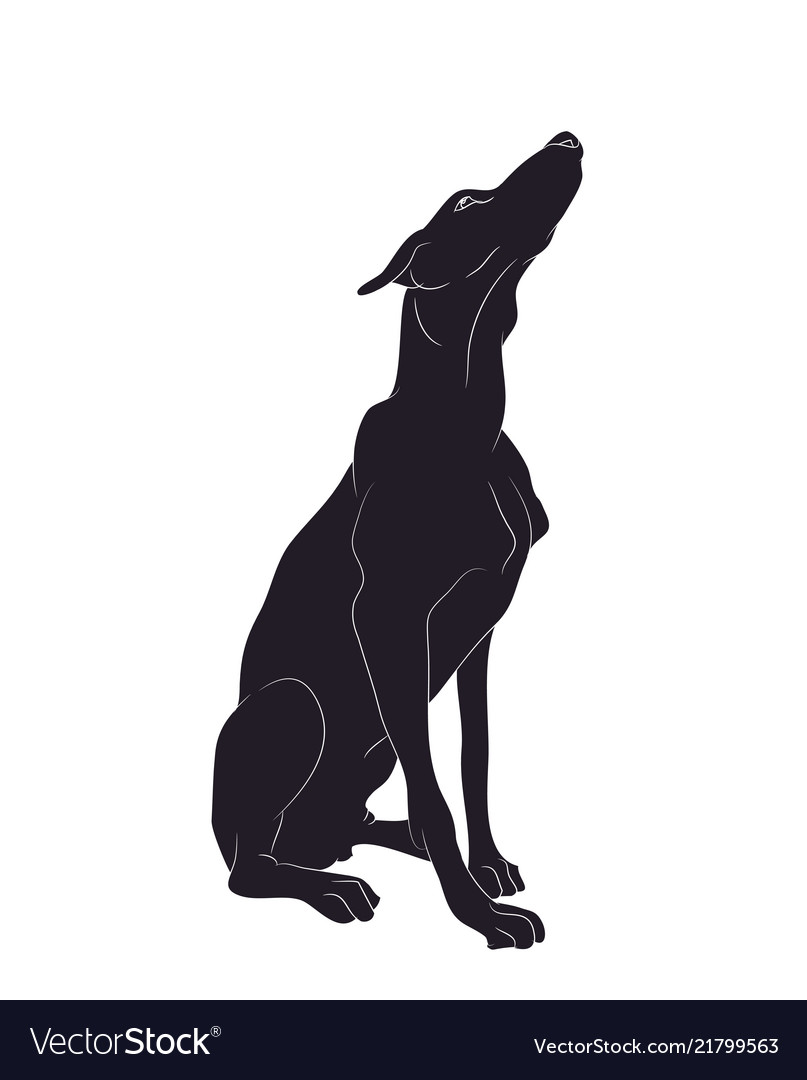 1024x768 Dog Sitting Silhouette Clipart | Dog silhouette, Silhouette, Silhouette  images