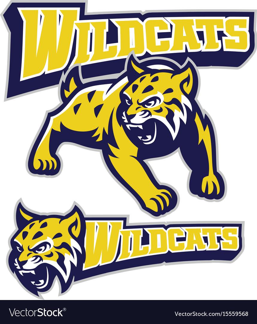 Angry wildcat mascot vector image