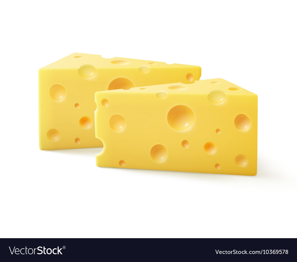 triangular pieces of swiss cheese close up vector image