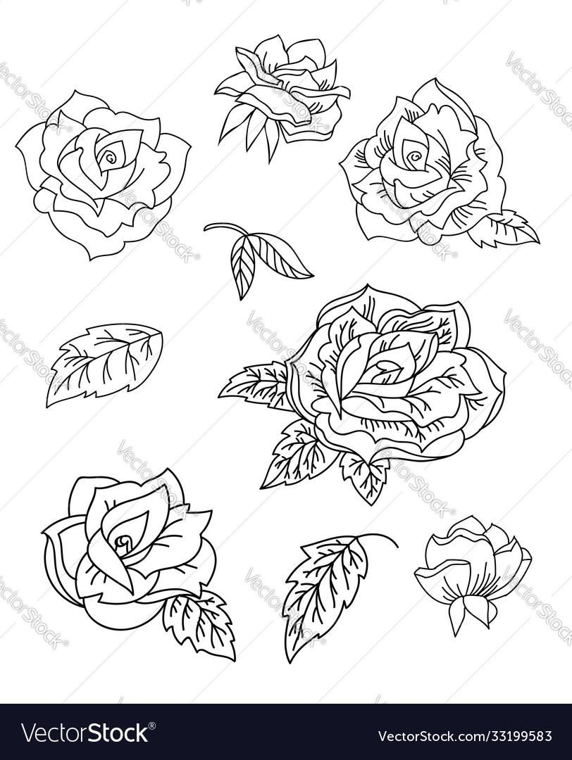 Line art set rose flowers