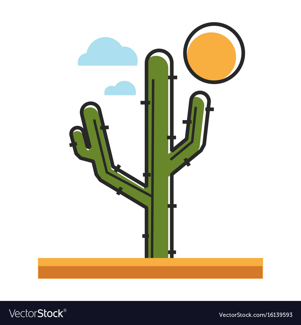 Mexican green cactus under hot sun in desert vector image
