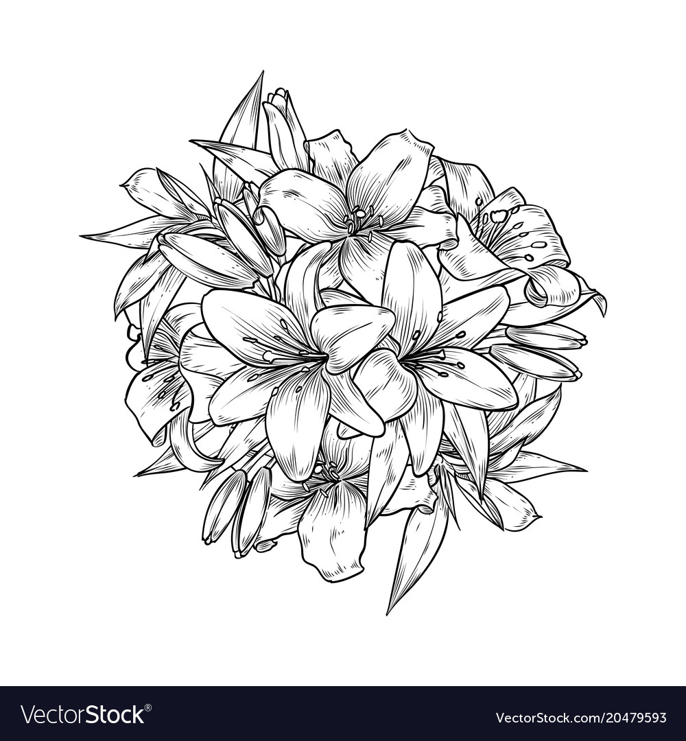 vintage template with lily flowers royalty free vector image