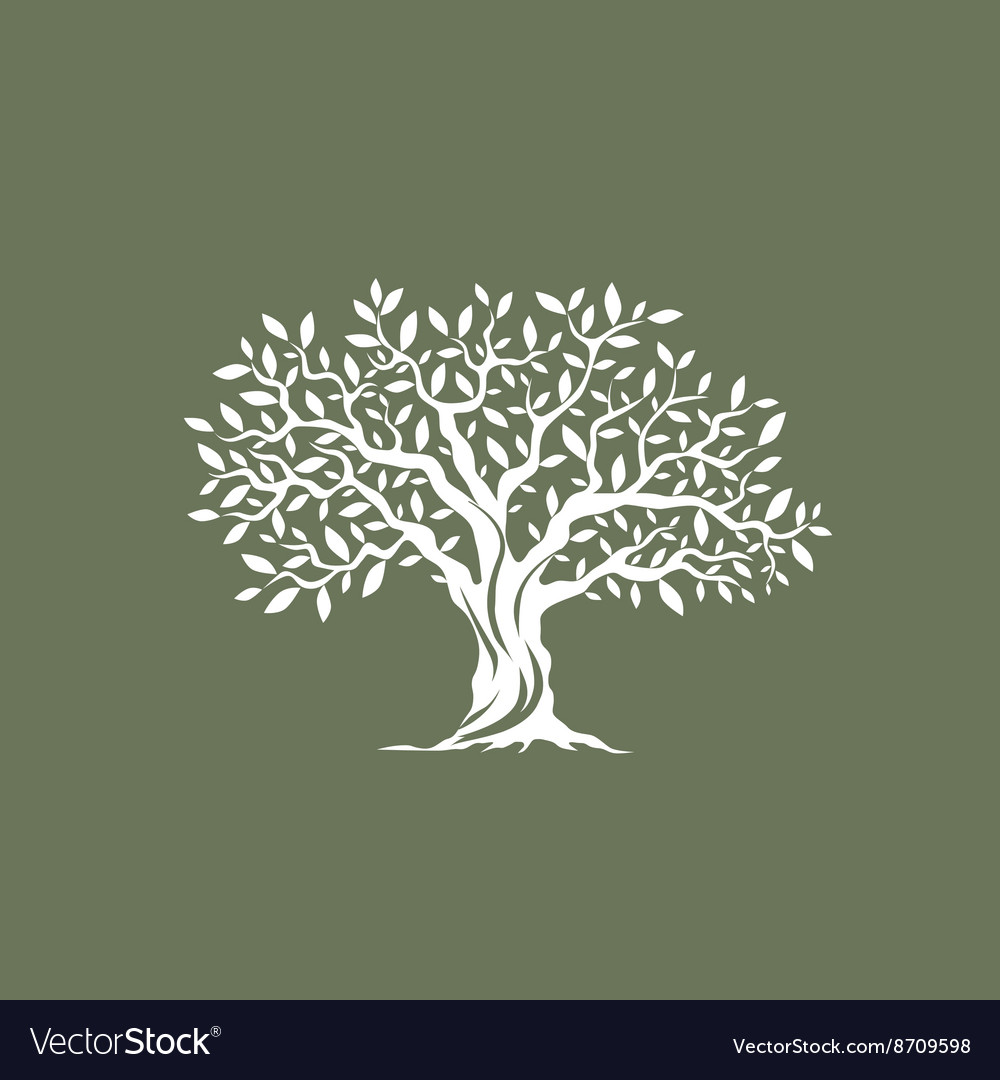 Olive tree silhouette on grey background