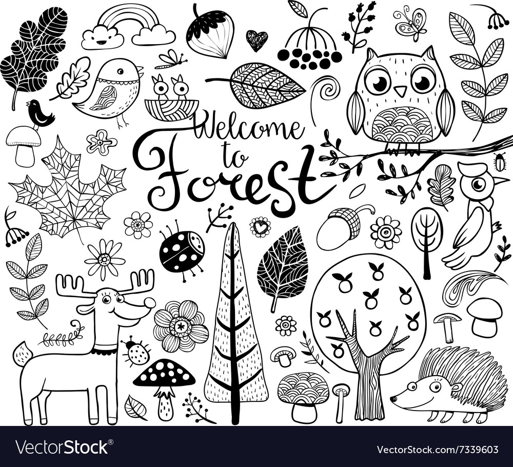Forest design elements in doodle style