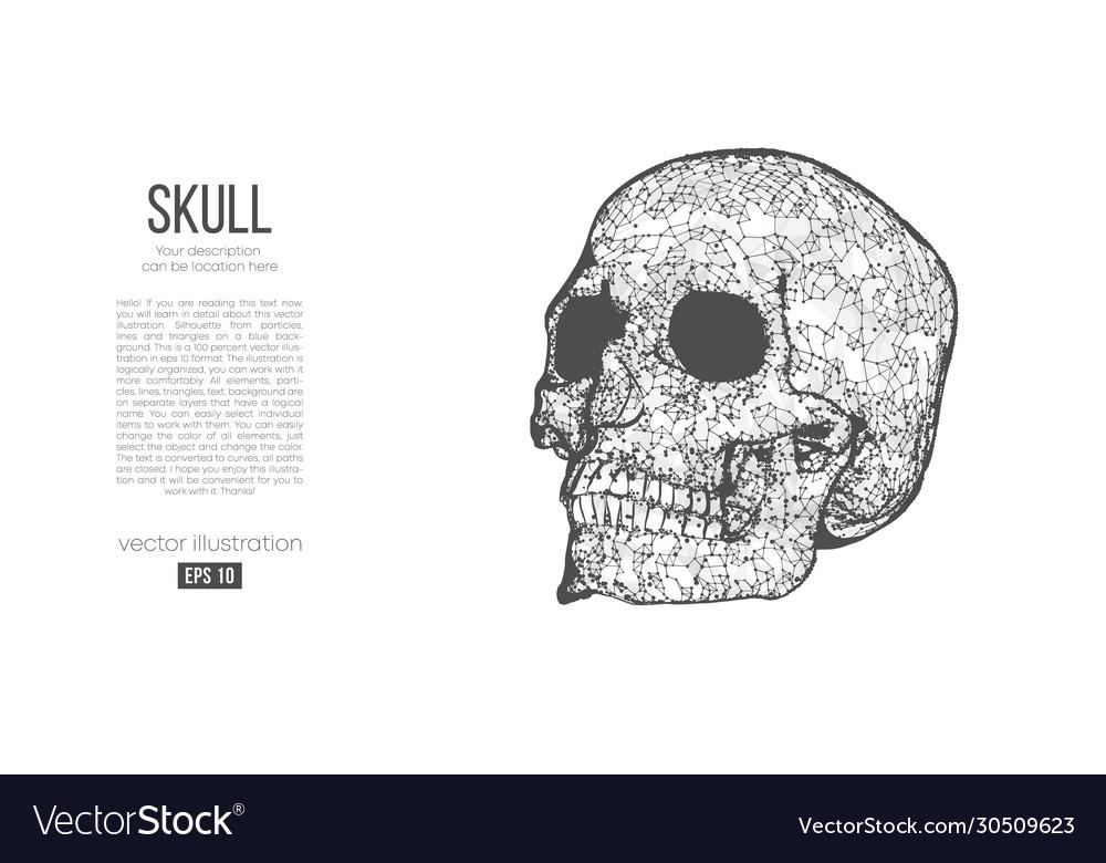 Abstract silhouette polygonal skull human