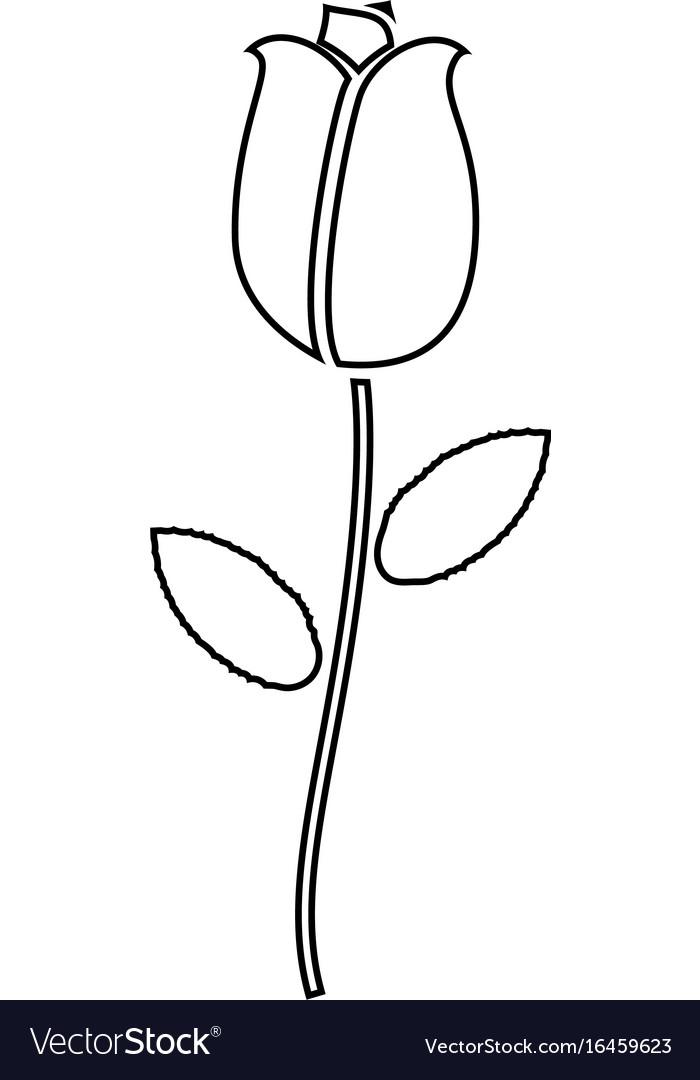 Rose black color icon vector image