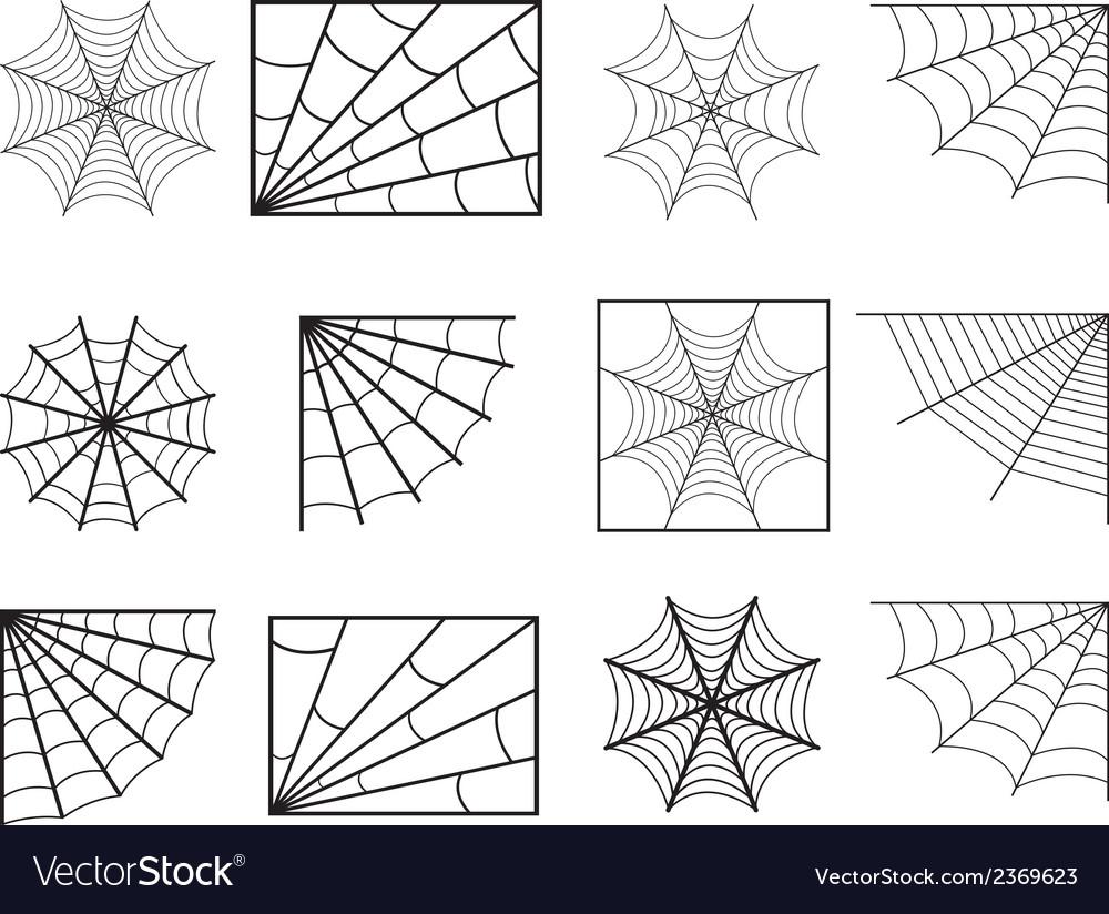 spider web royalty free vector image vectorstock