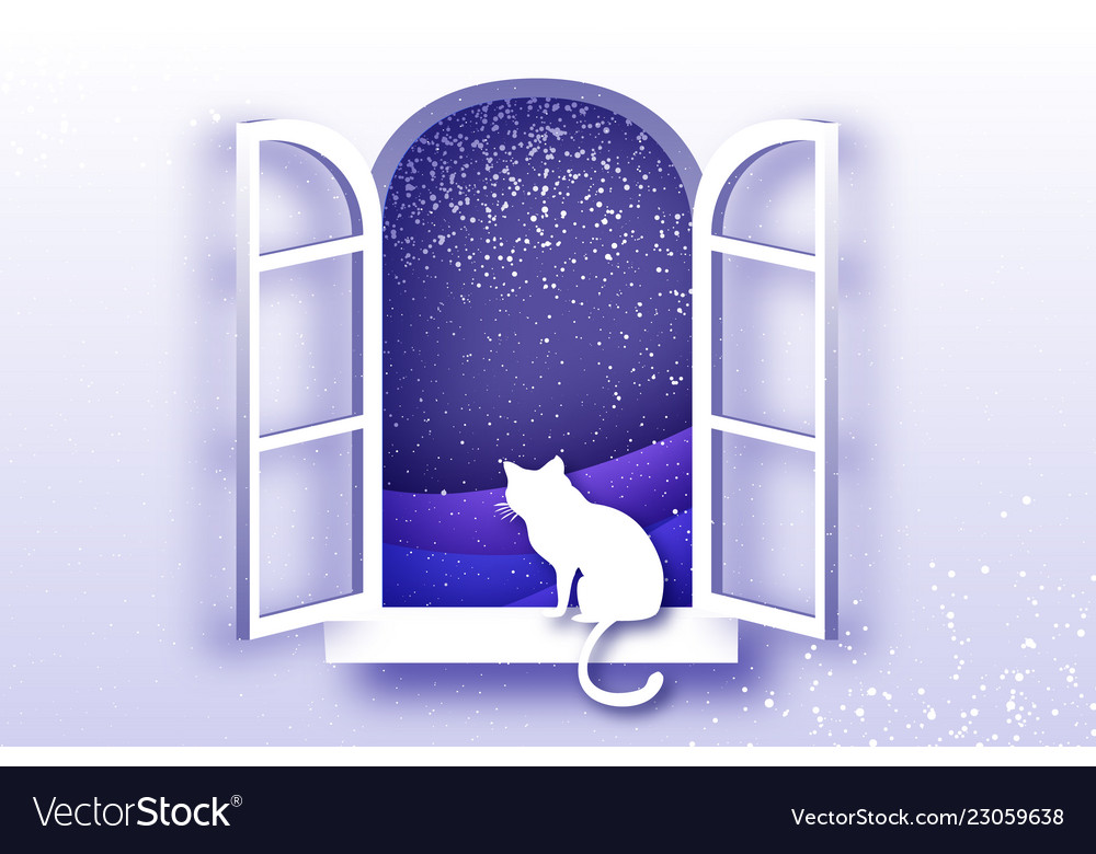 Cat looking through origami window framer merry