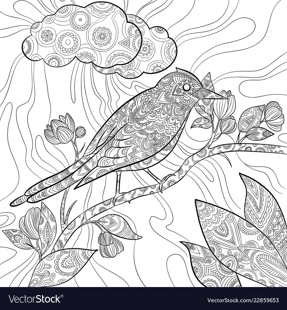 Coloring Page With Bird Feathers. Children Educational Game ... | 1080x1000