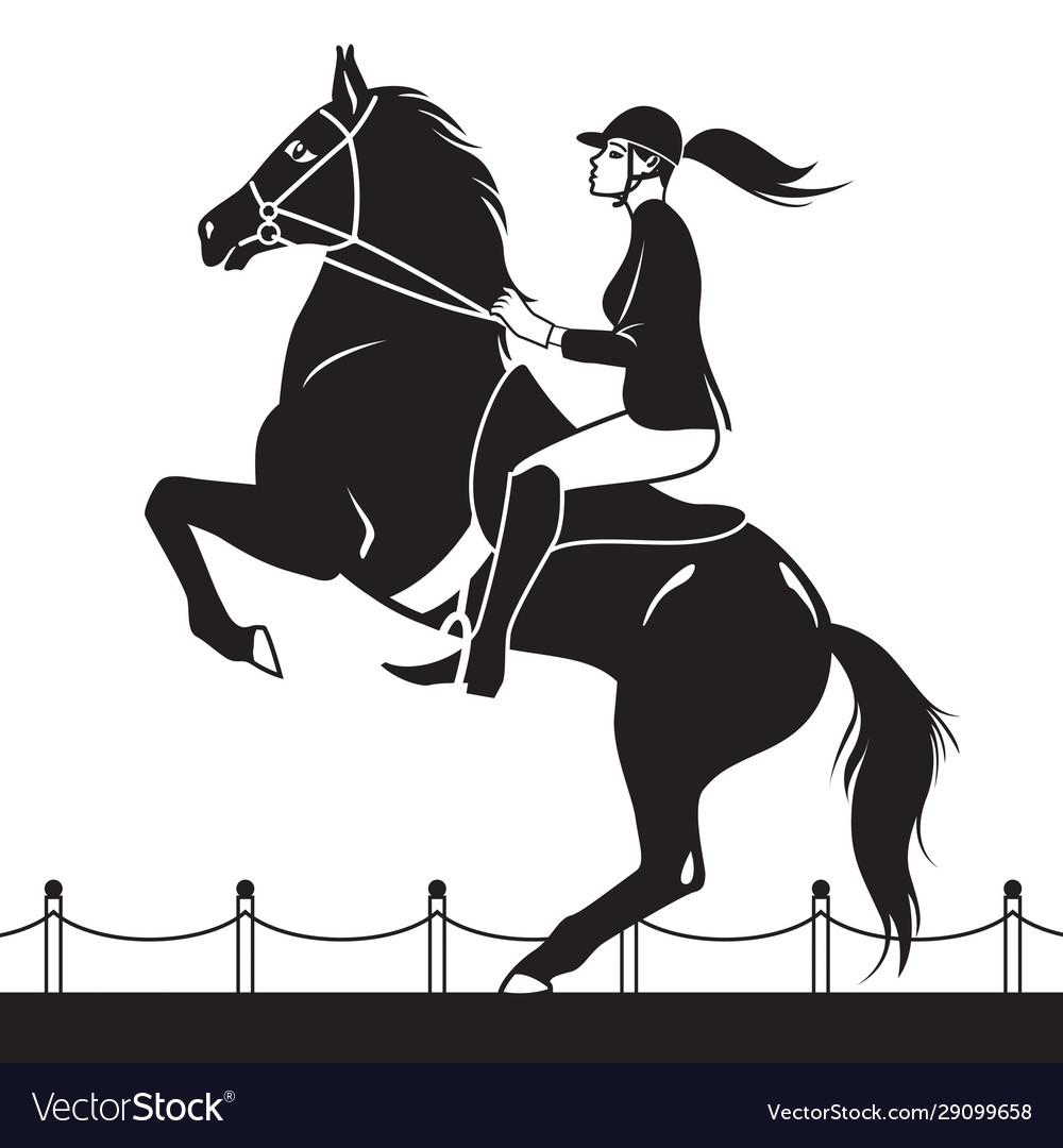 Jockey riding a horse shows jumping