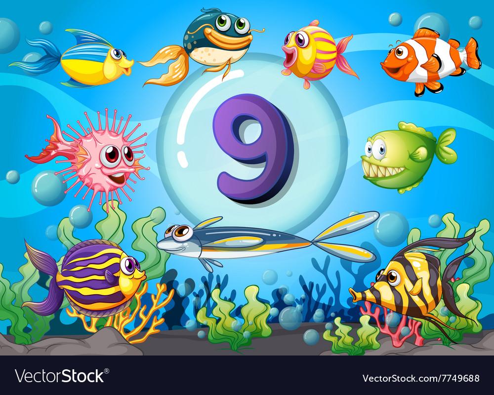 Flashcard number nine with nine fish underwater