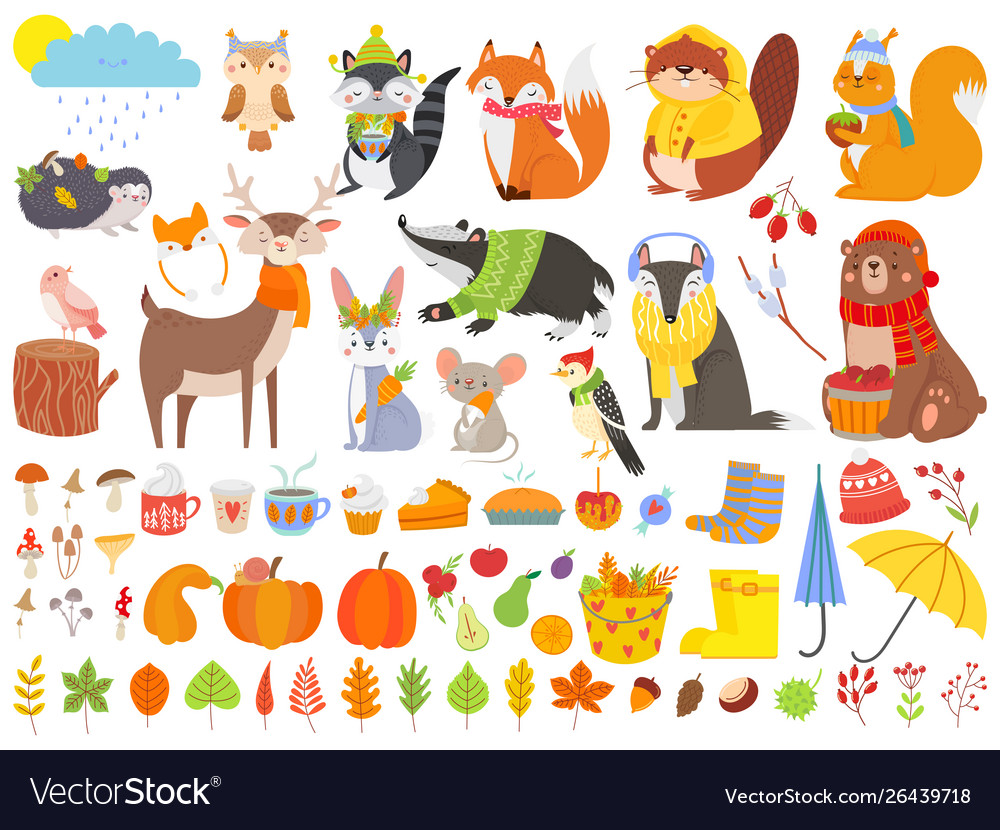 Autumn forest animals fall squirrel funny bear