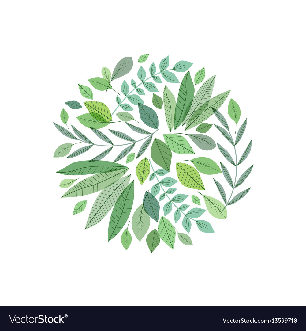 Decoration branches with leaves vector image