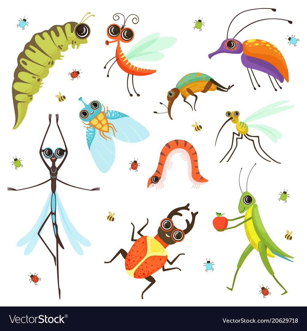 Set of funny cartoon insects isolate on white vector image