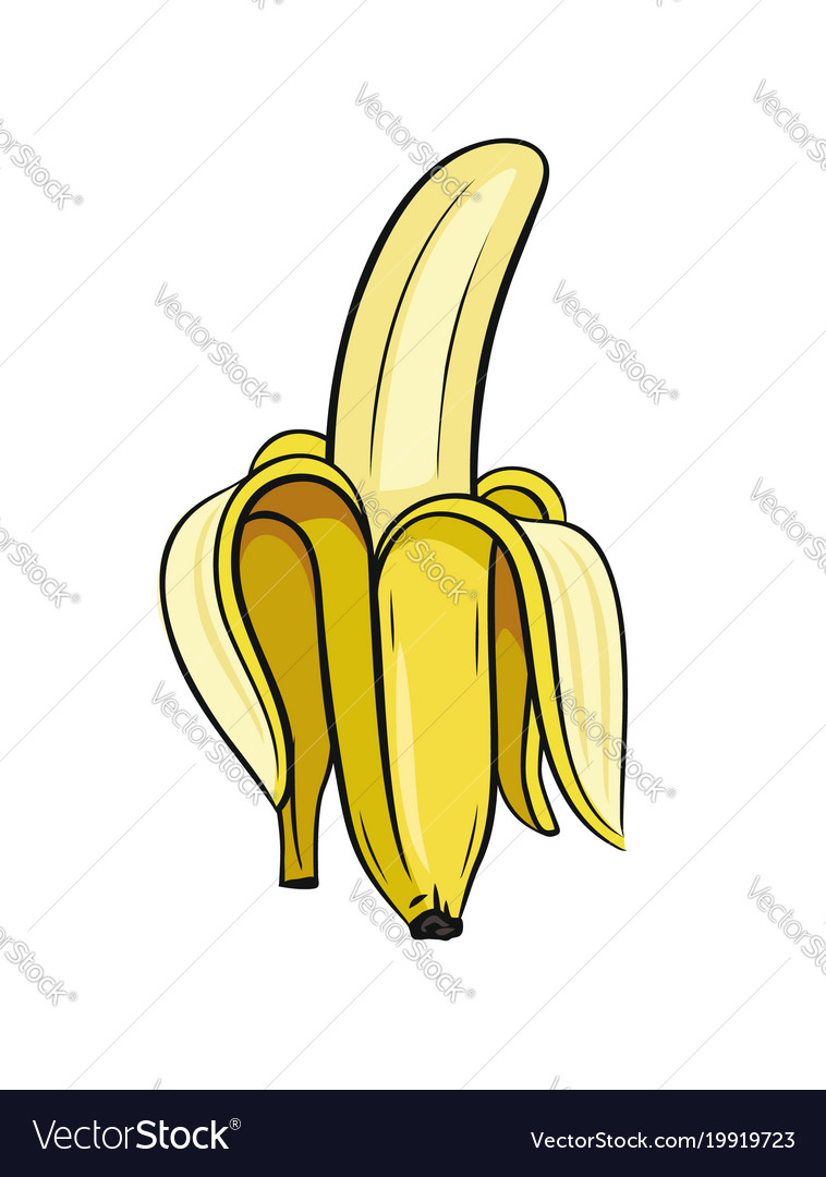 Banana vector. Sketch of half peeled