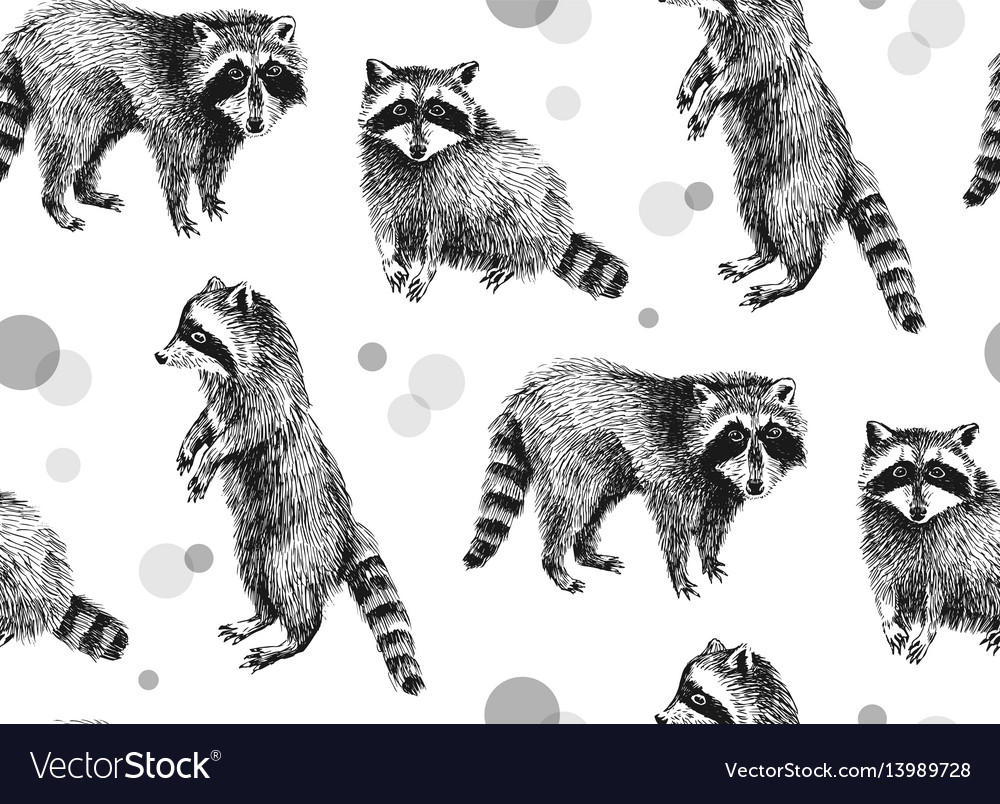Hand drawn seamless pattern with raccoons