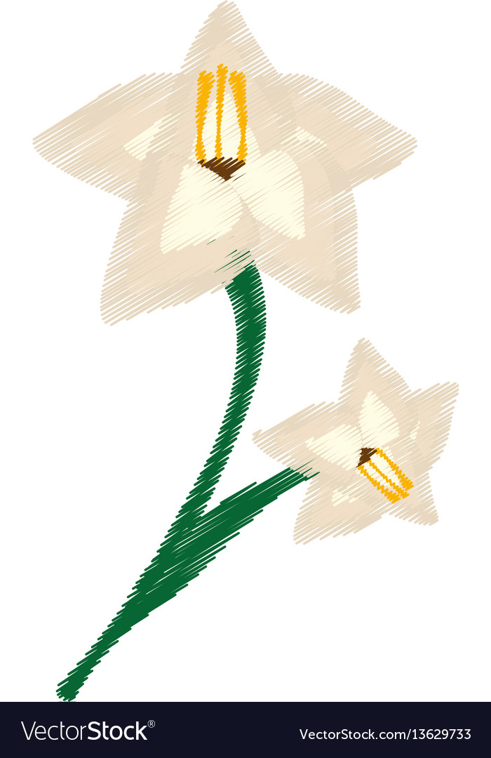 Drawing gladiolus flower ornament image