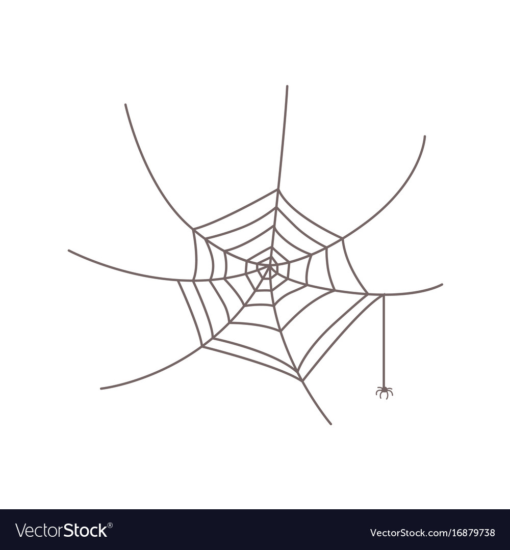 Little spider hanging from web halloween symbol vector image