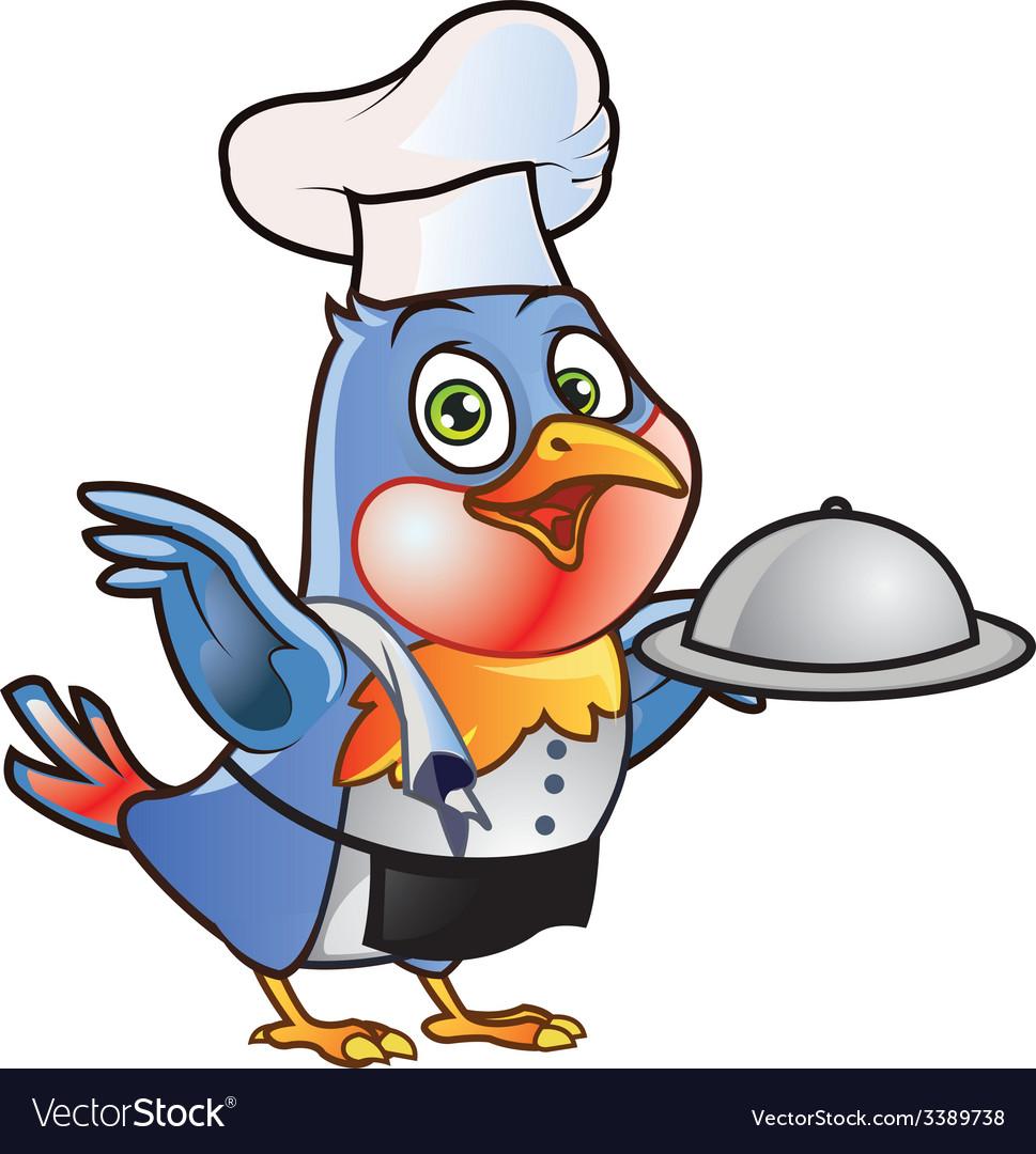 Robin Bird Chef vector image