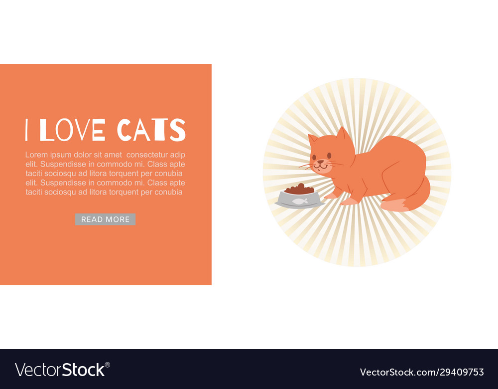 Cartoon happy cat with bowl full pet food for