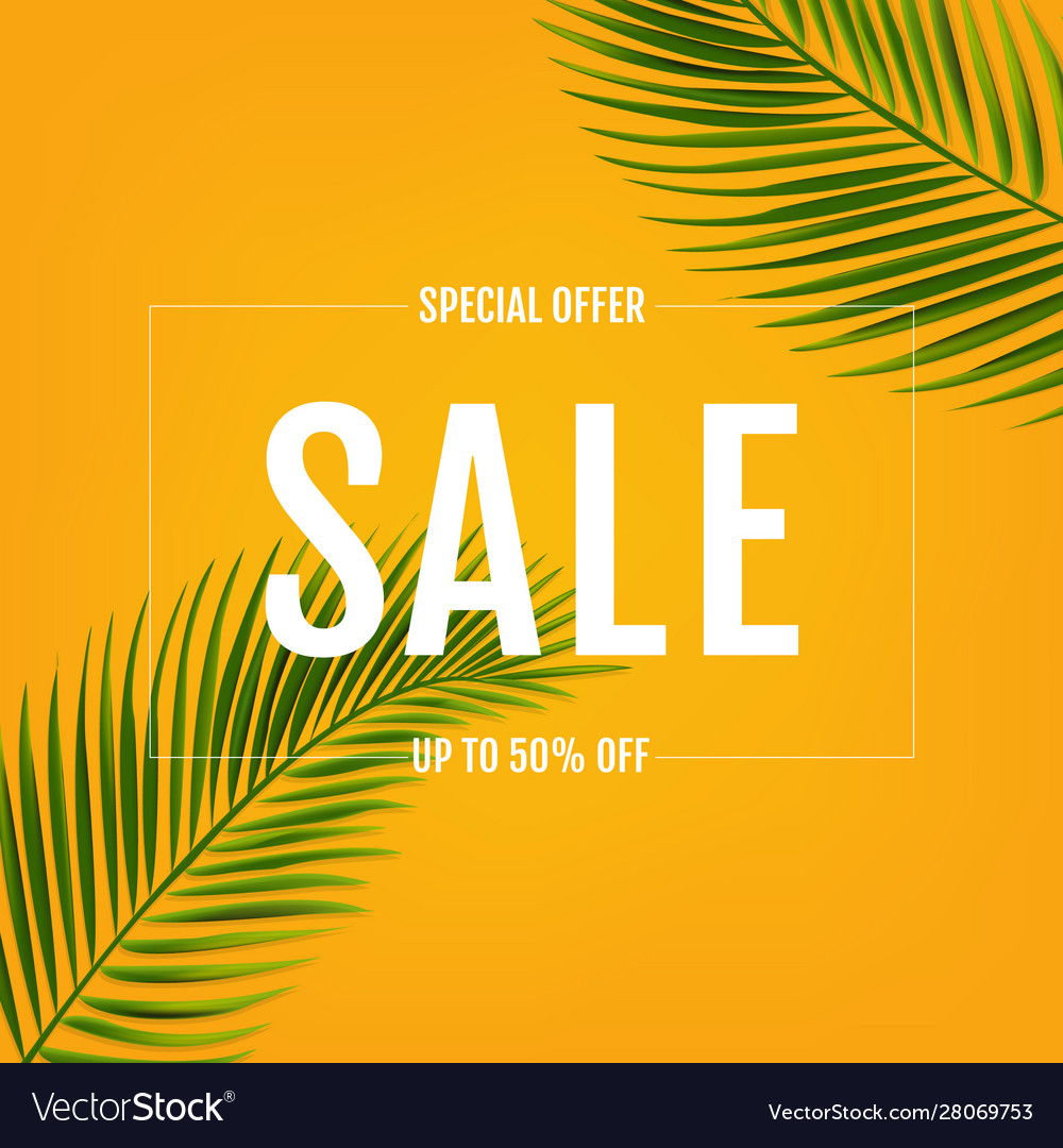 Sale banner with palm leaf