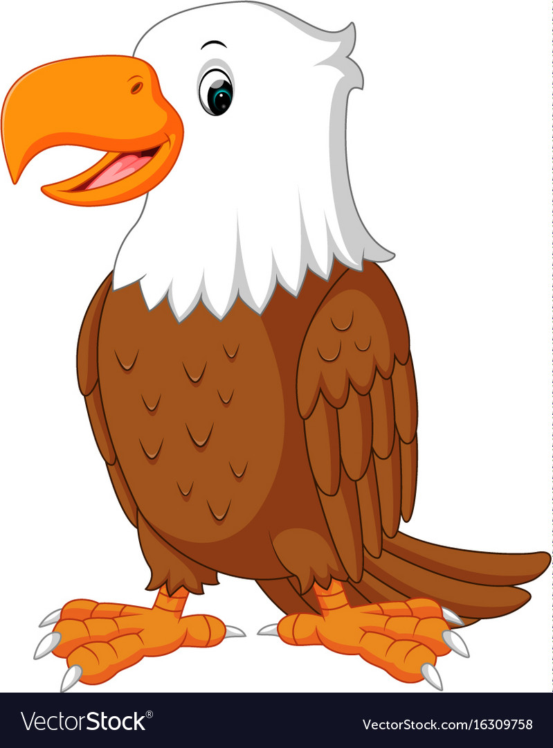cute eagle cartoon royalty free vector image vectorstock rh vectorstock com cartoon bald eagle images cartoon eagle pictures free