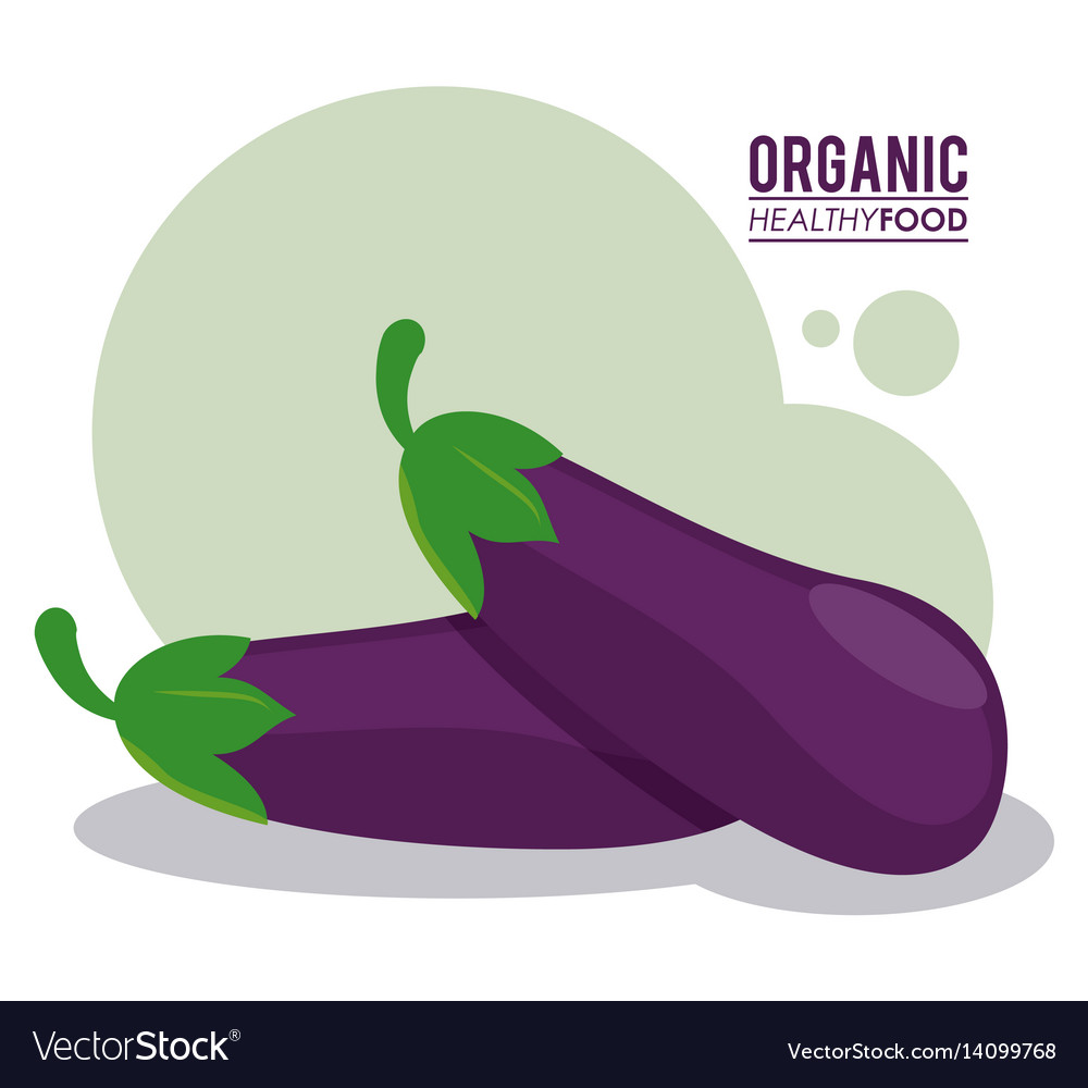 Organic healthy food eggplant nutrition