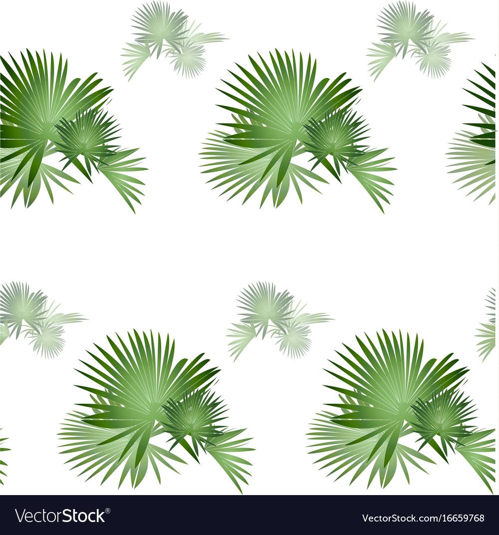 Palm tree pattern-01