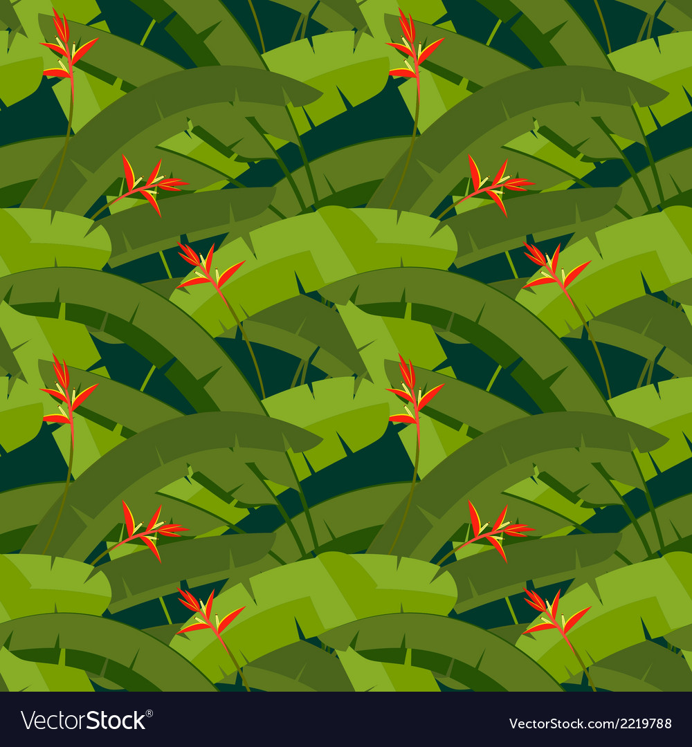 Tropical palm leaves with red Heliconia flowers