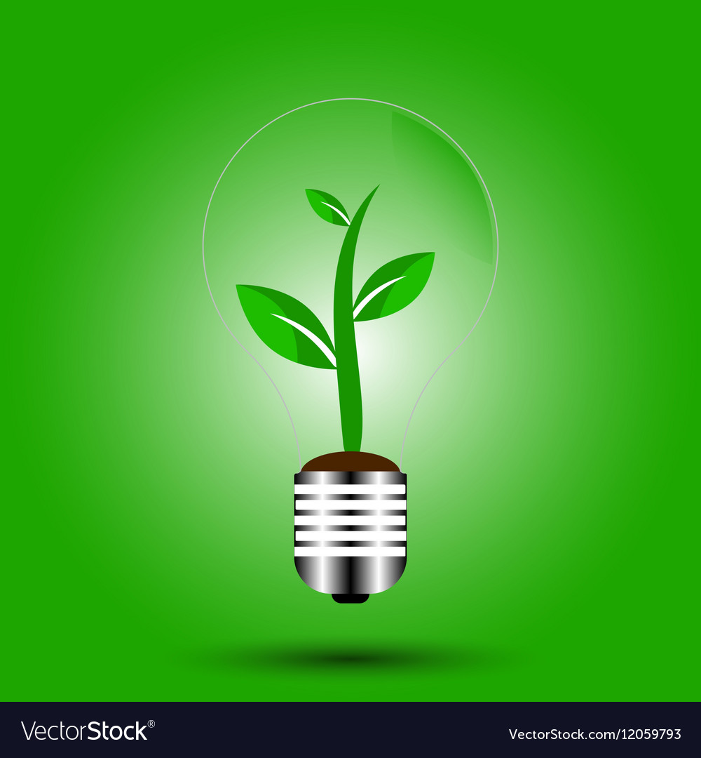 Eco bulb with plant green vector image