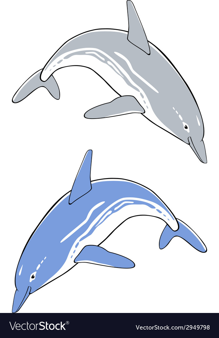 Cute jumping dolphins vector image