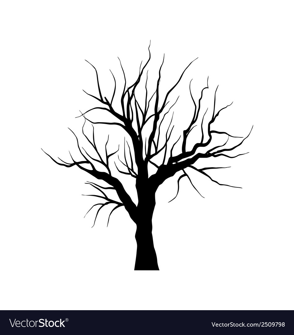 sketch of dead tree without leaves isolated on vector image rh vectorstock com Vector Dead Tree with Buds dead tree illustration vector