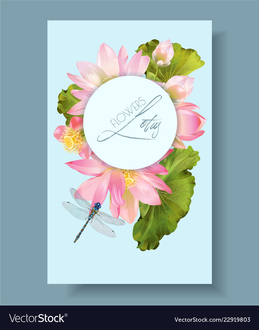 Lotus Flower And Dragonfly Vertical Botany Banner Vector Image