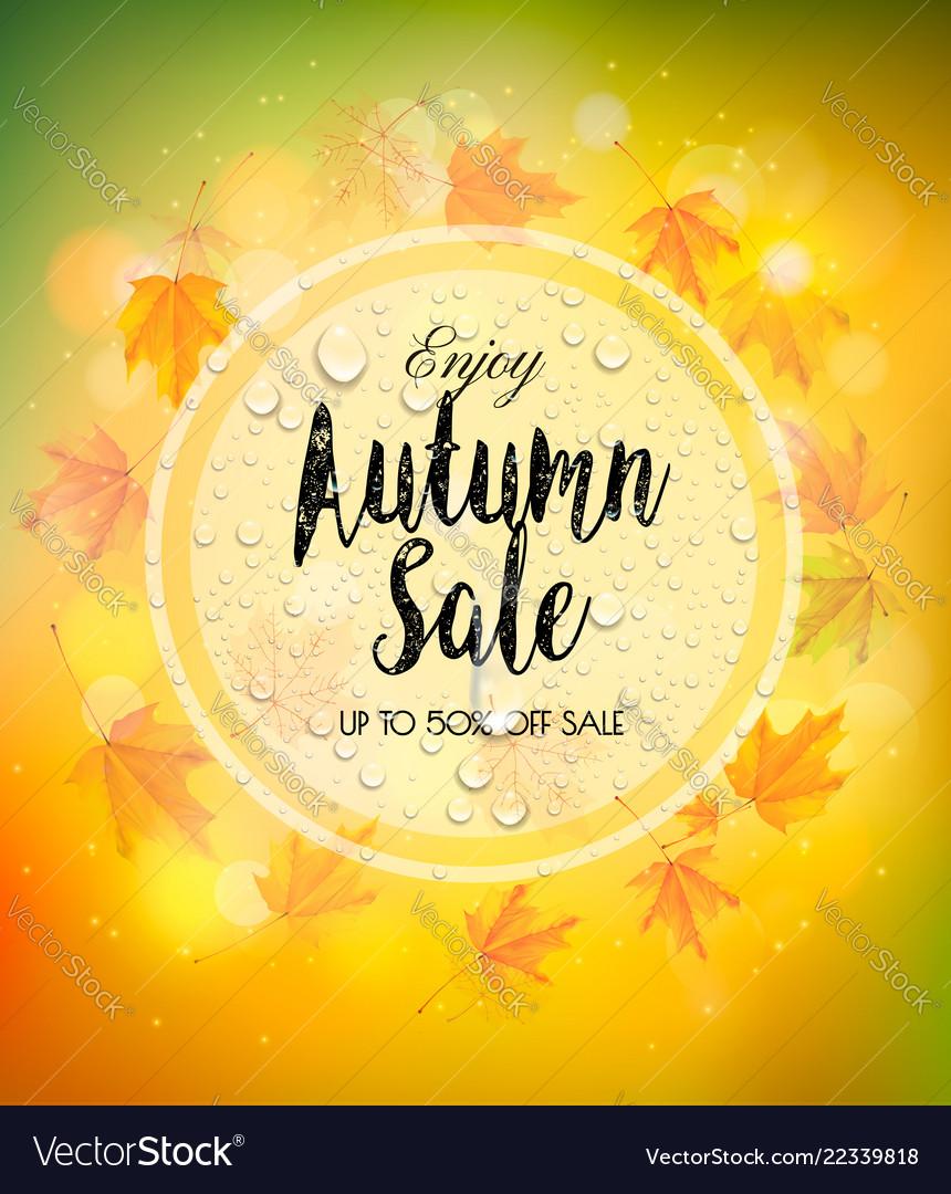 Enjoy autumn sale background with autumn leaves