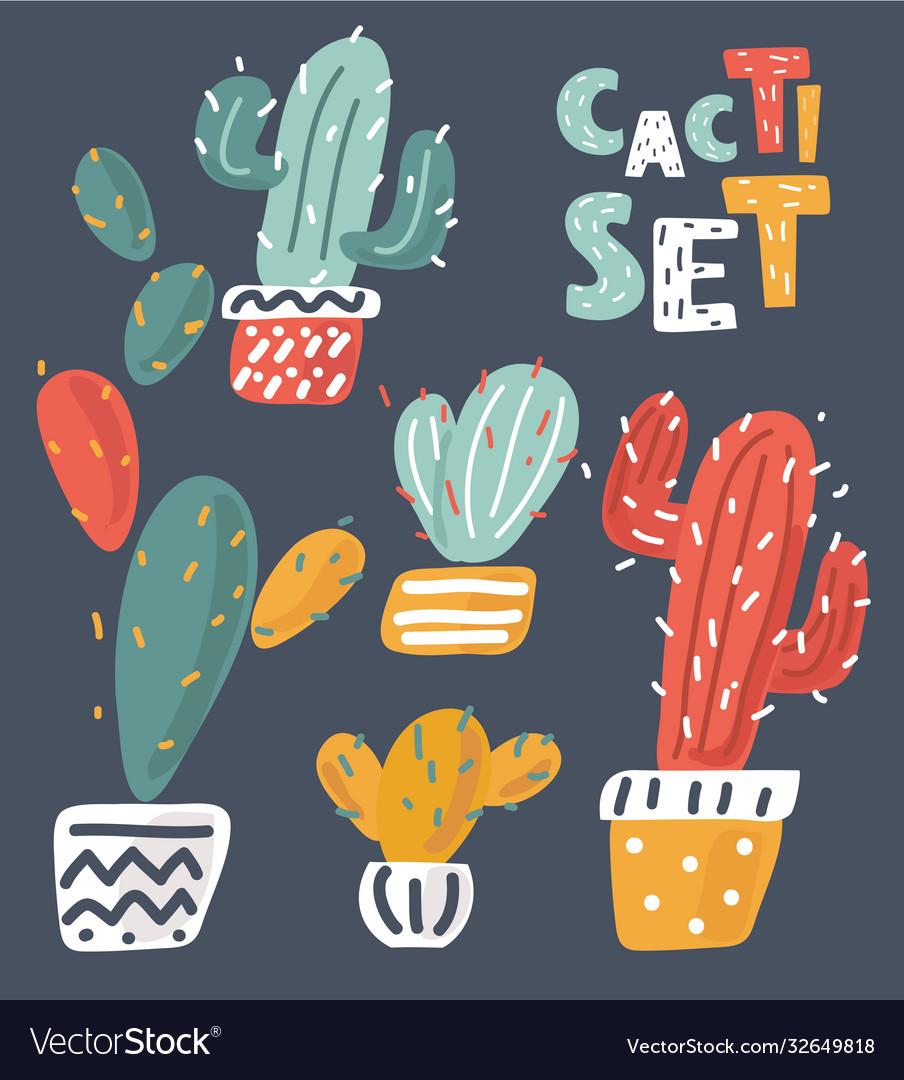 Fun patch cactus set