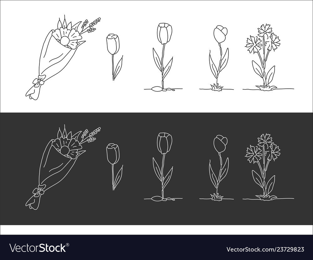 A set of drawn flowers black and white options