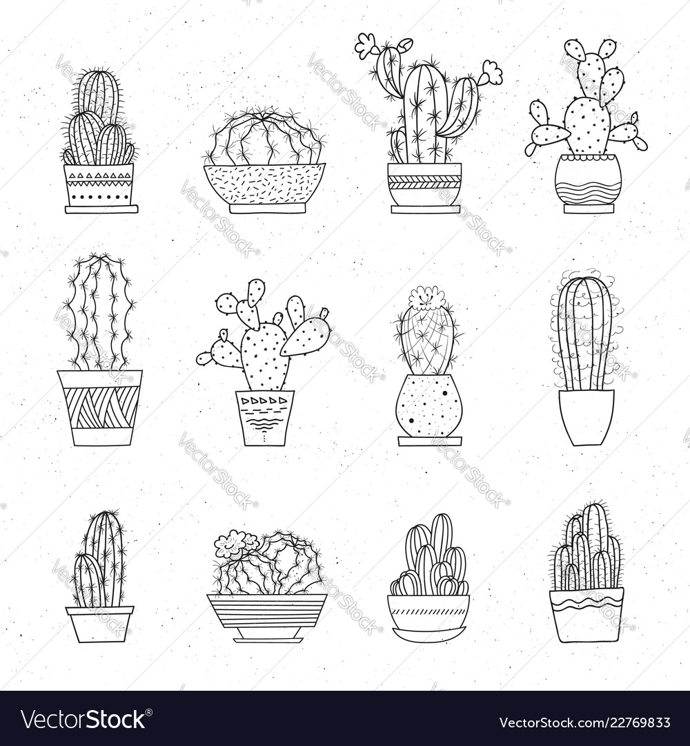Decorative potted cacti set of hand-drawn