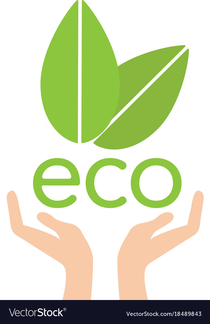 Eco hand with leaves helping nature concept vector image