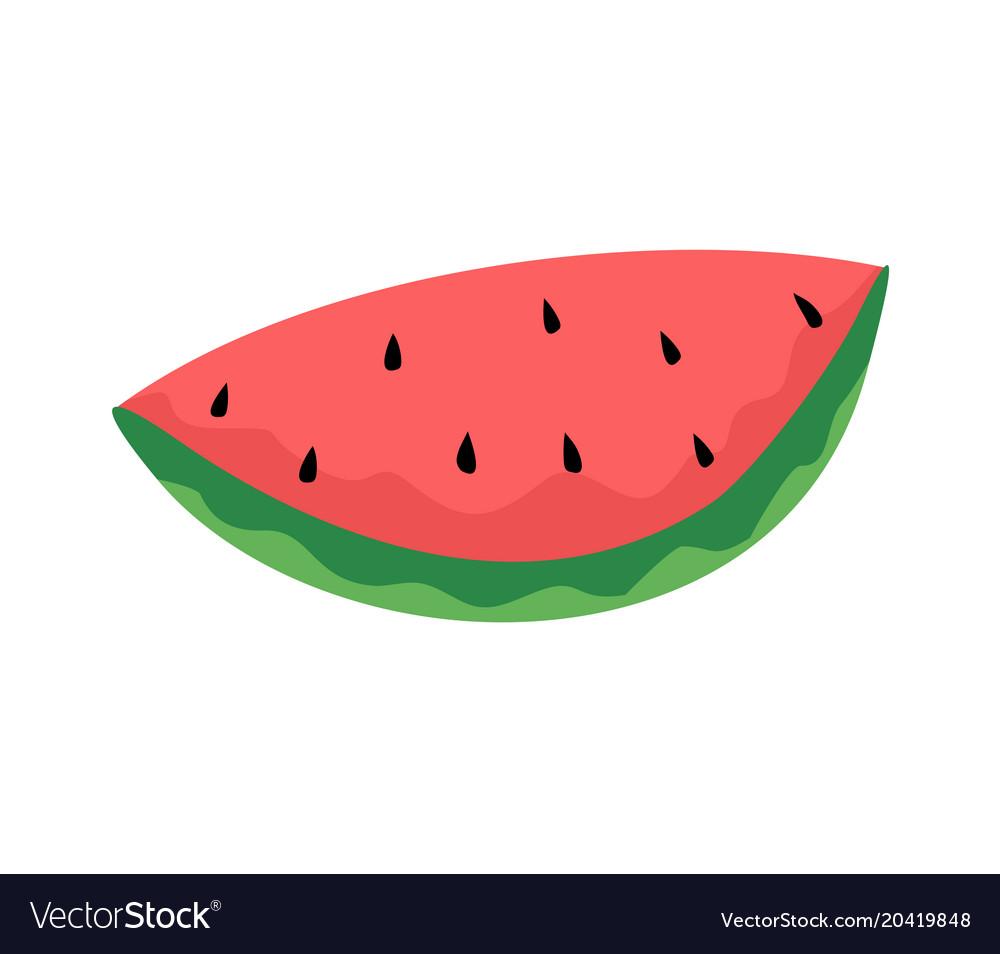 Watermelon draw vector image