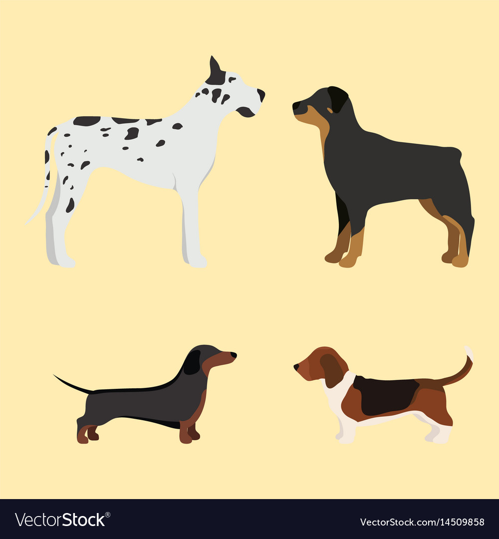 Funny cartoon dog character bread in cartoon style vector image