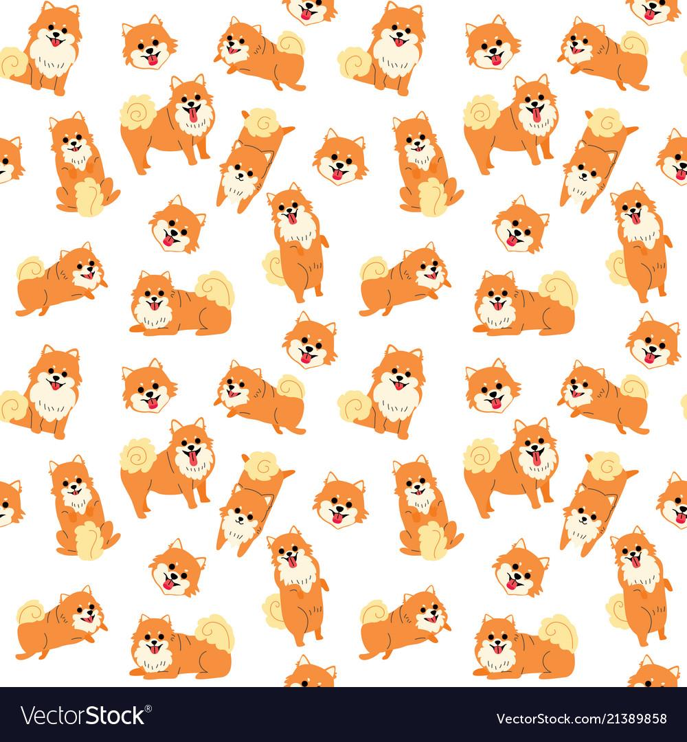 Pomeranian seamless pattern