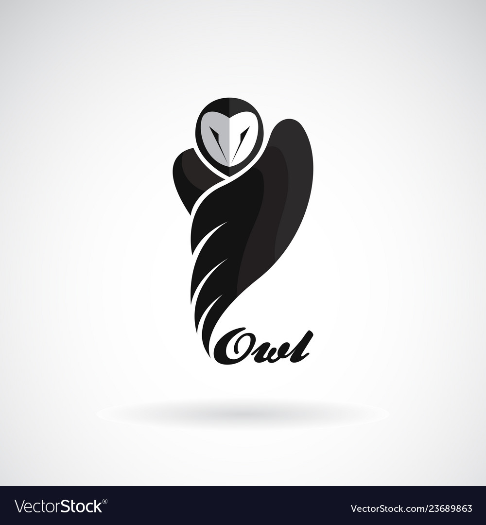 An owls design on white background bird icon wild