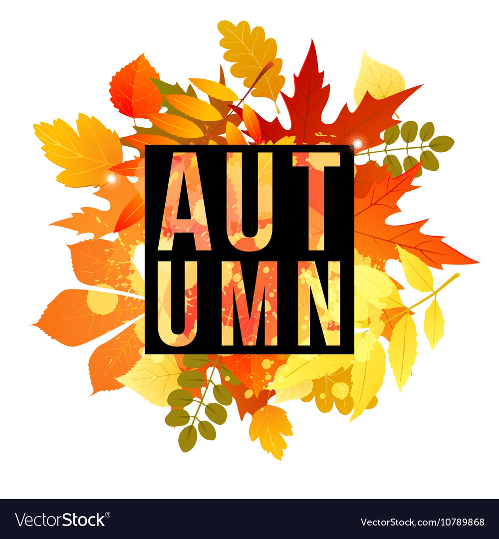 Autumn banner for your design