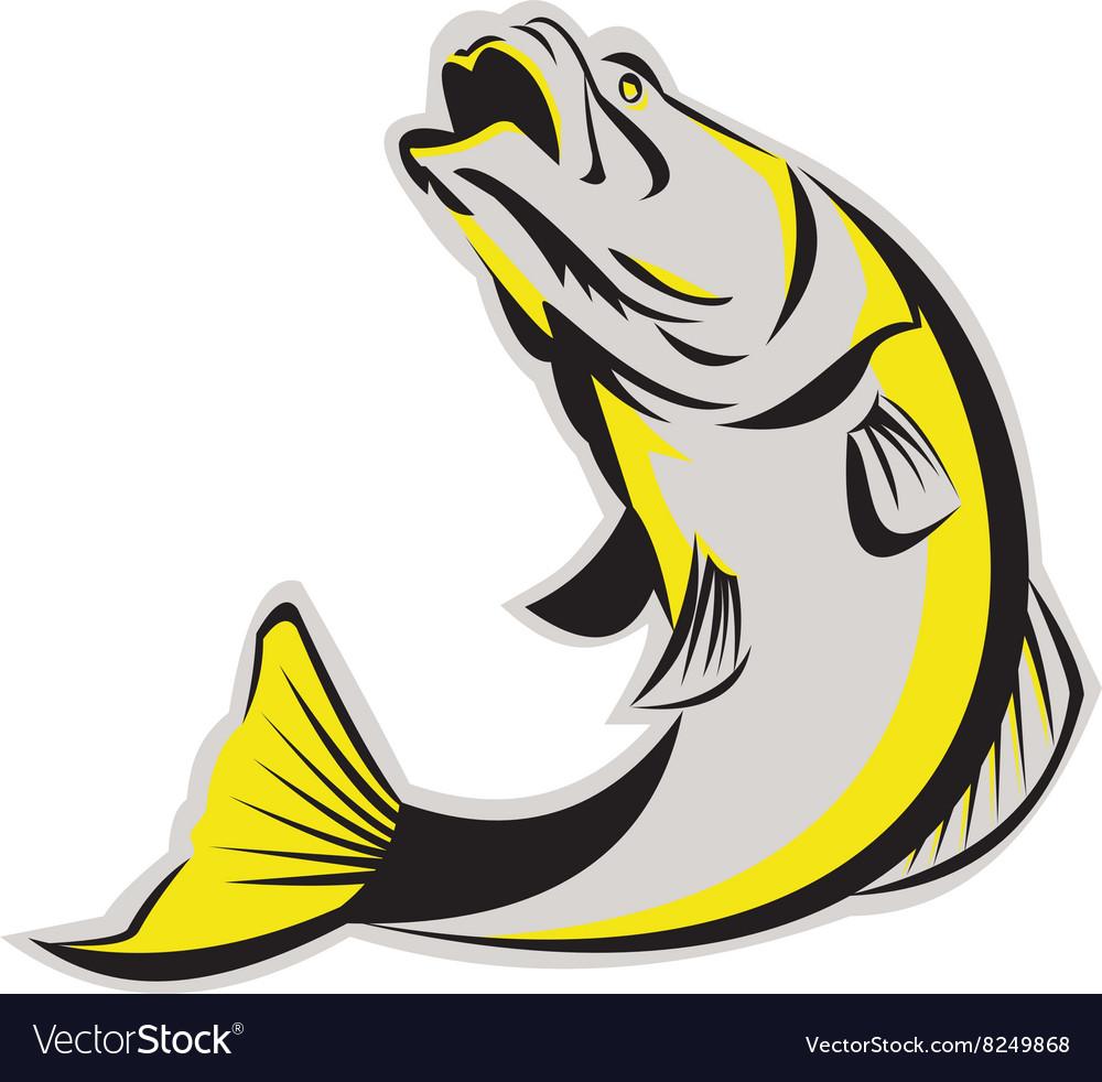 Barramundi Fish Jumping Up Isolated Retro vector image