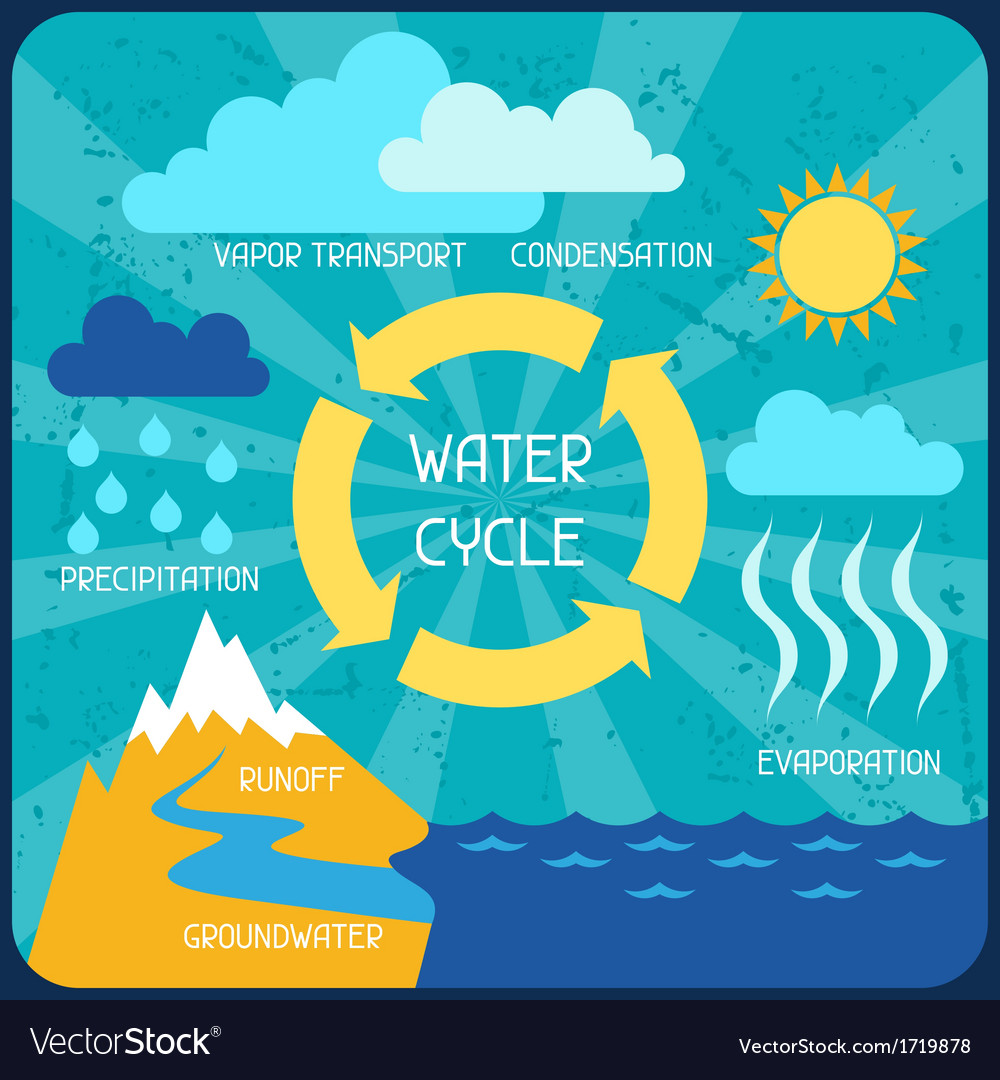 The water cycle Poster with nature infographics in