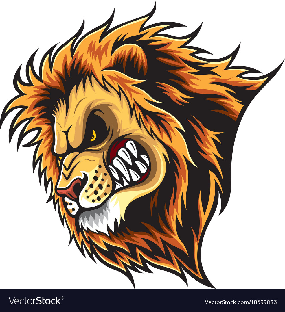 angry lion head royalty free vector image vectorstock rh vectorstock com vector lion tattoo vector lion fish free