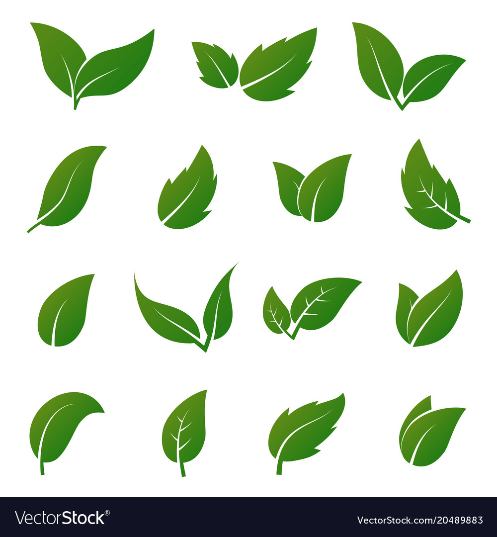 Green leaf icons spring leaves ecology Royalty Free Vector